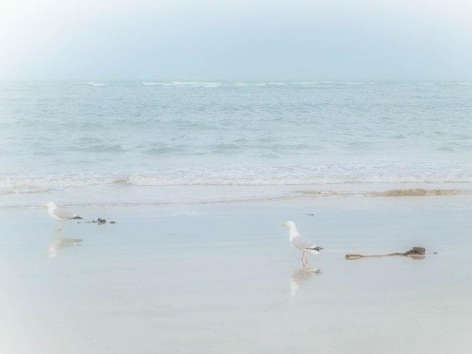 plage granville 4