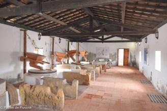 Algarve fin-111