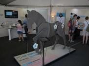 l'expo Sciences en selle qui gère la fougère