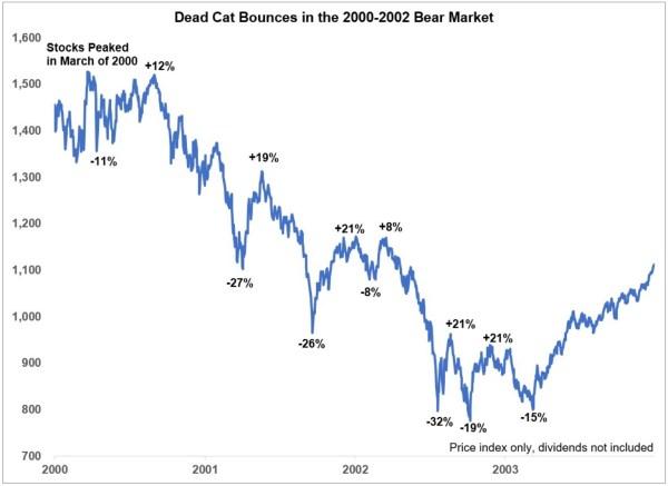 bear market rallyes