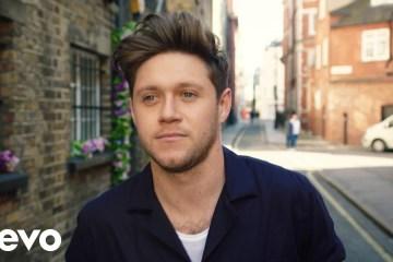Niall Horan comparte su nuevo tema 'Nice To Meet Ya'. Cusica Plus.