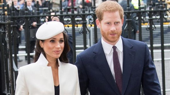 Doubts that Harry and Meghan were infected with Corona virus!