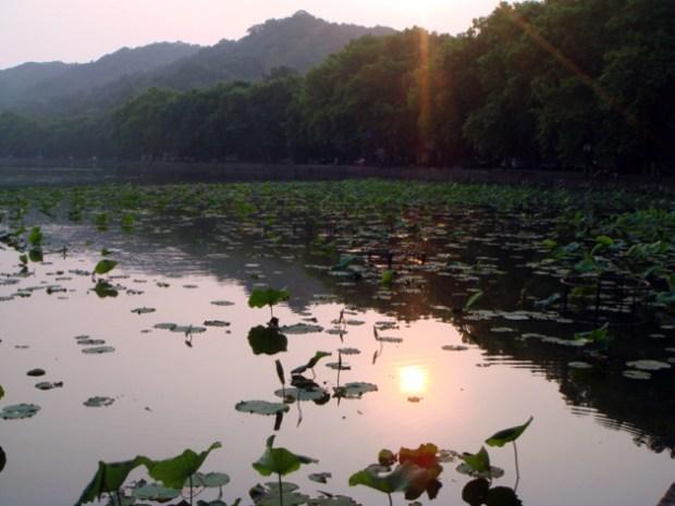 西湖 夕日がうつりこんでキレイ