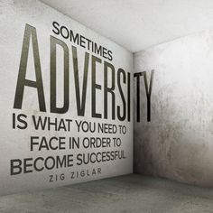 adversity-zig