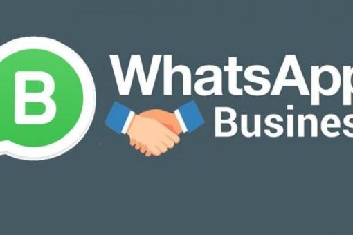 mídias sociais - whatsapp business