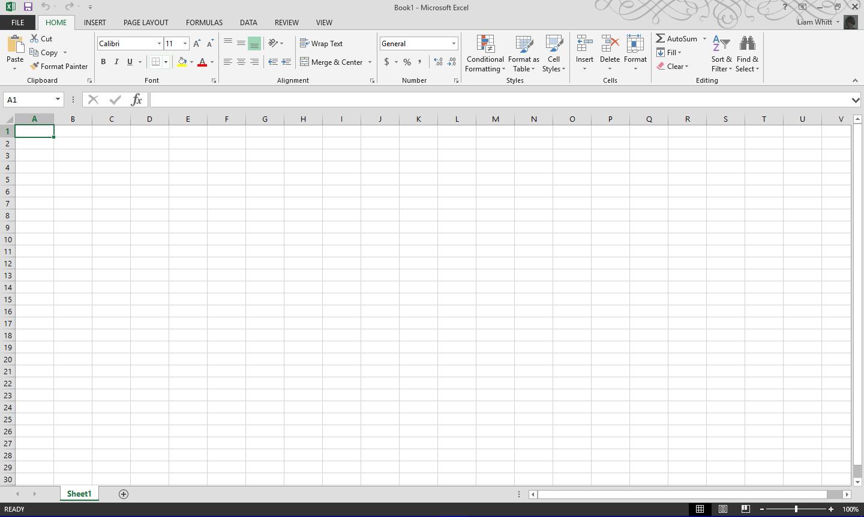 Microsoft Excel 97 Worksheet