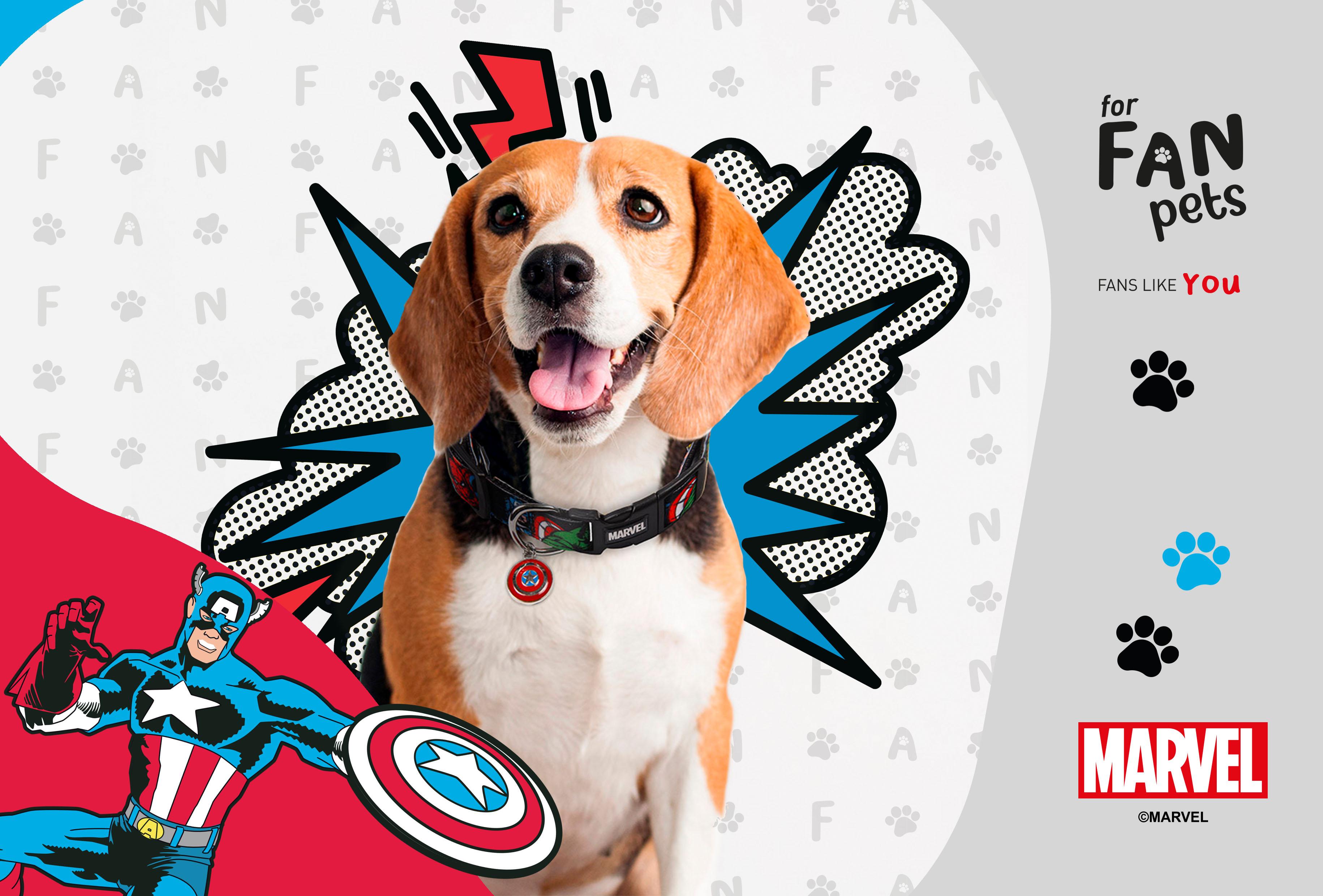 Marvel Pet Collar