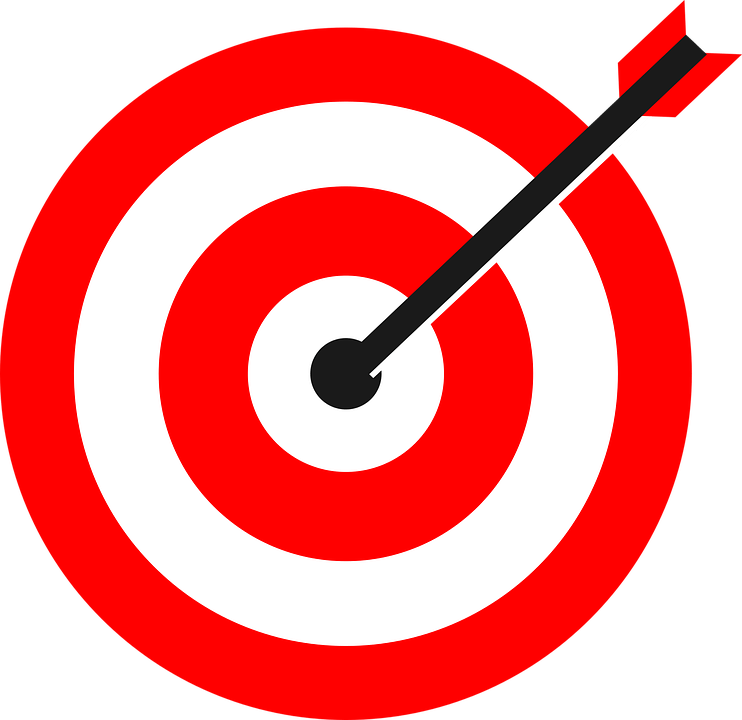 Image result for pics of bulls eye targets