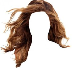 Hair PNG Transparent HairPNG Images PlusPNG