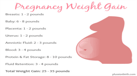 How Much Weight Do Pregnant Women Gain?   Plus Size Birth