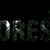 The Forest Preview: Cannibals and Bugs