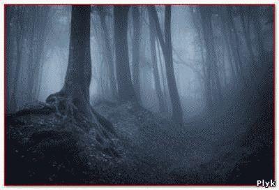 Мистические истории из жизни обычных людей