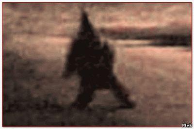 Видео, таинственные существа