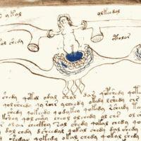 Споры вокруг таинственного манускрипта Войнича