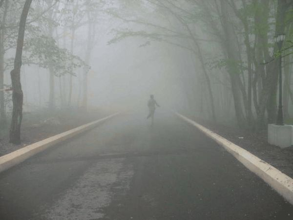 Таинственный туман 1