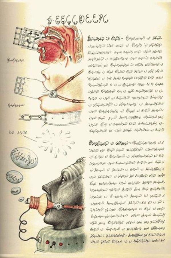 книга Серафини
