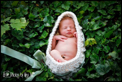 Best Newborn Photography Michigan