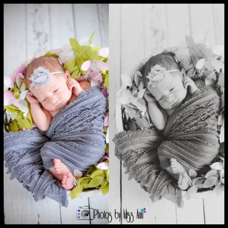 Photos by Miss Ann Plymouth Michigan Newborn Photographer