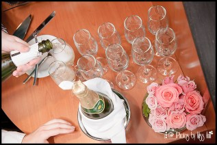 Champagne Toast Michigan Wedding Photographer Photos by Miss Ann