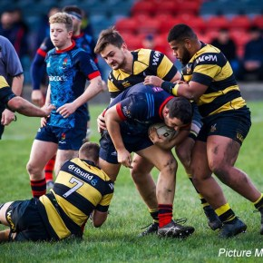 RUGBY REPORTS: Disappointment for Ivybridge, but good wins for Services and Oaks