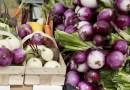 Plzeňské farmářské trhy startují v sobotu 17. dubna