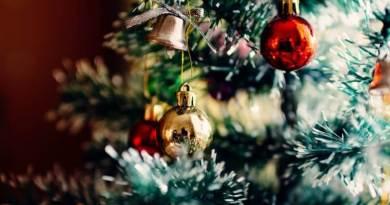 Rozsvícení vánočního stromu ve Spáleném poříčí a malé adventní trhy