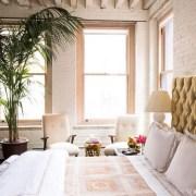 Palma v interiéru