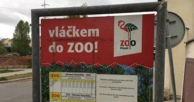 Zoo vláček vyrazí do ulic ve svátek i v sobotu