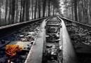 Láska nacisty z koncentračního tábora k mladé Židovce zachránila i život zajatci původem ze západních Čech