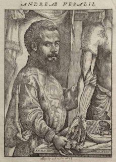 Vesalius položil základy moderní anatomie
