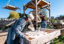 Tip na výlet do Bavorska: Historický park Bärnau-Tachov