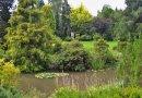 Meditační zahrada v Plzni připomíná oběti totalitních režimů. Za vznikem unikátního díla stojí jediný muž