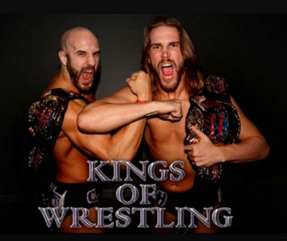 Image result for tag team wrestlers pictures