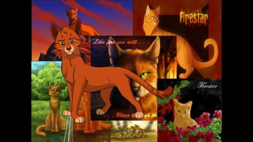 Warrior Cat And Random Cats Wallpaper Aj Amino