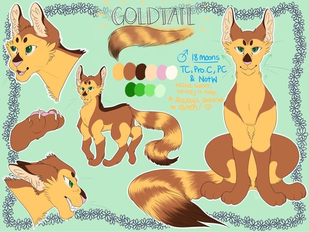 Finished T Goldtail S Reference Sheet