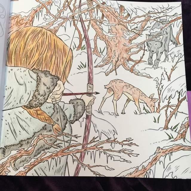 ACOTAR coloring book  completed page  Sarah J. Maas Amino