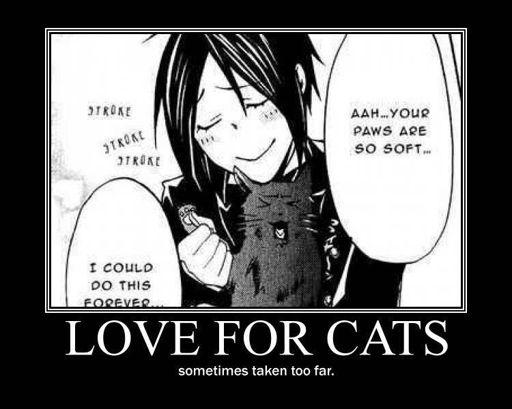 Image: Funny Black Butler Memes - Crazy Cat Butler - Wattpad ...