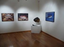 g-izlozba-Sačuvane prirodne ljepote Jadranskog mora-05