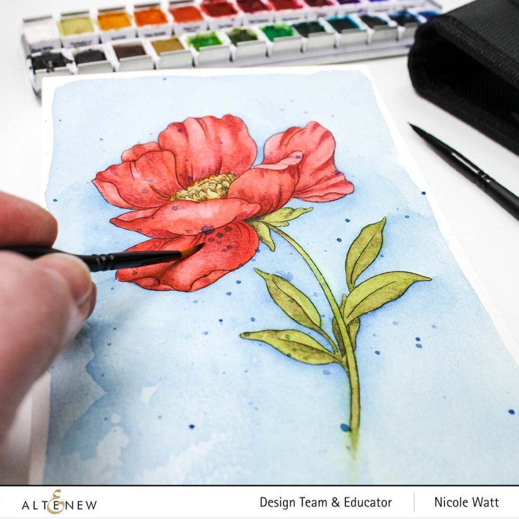 Watercolor painted poppy from Altenew Watercolor Coloring Book by Nicole Watt