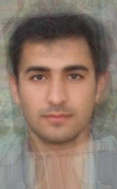 Average Iranian Male