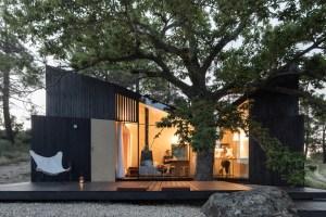 Casa no Castanheiro - Vencedor PNAM'21