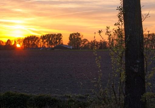 Sunset Miste5_2_klein