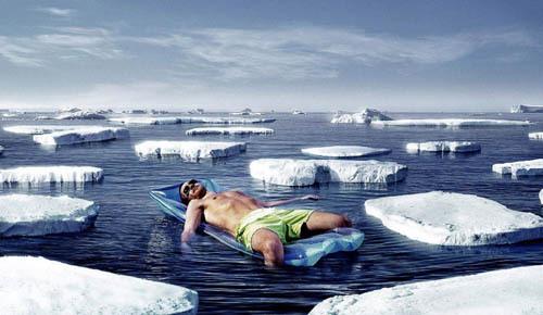 Sunning in the Arctic