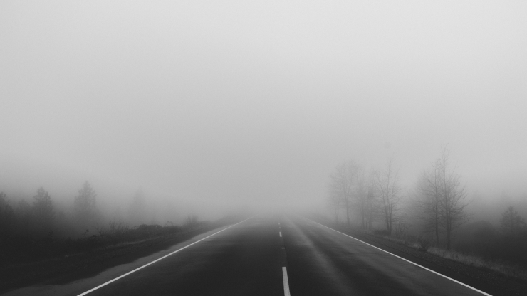Black and white image of a highway with trees covered in a foggy mist being used for Pneu You blog post.