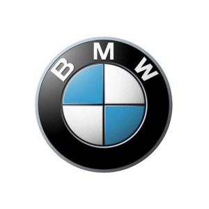 Задняя левая пневматическая стойка BMW 7 G12