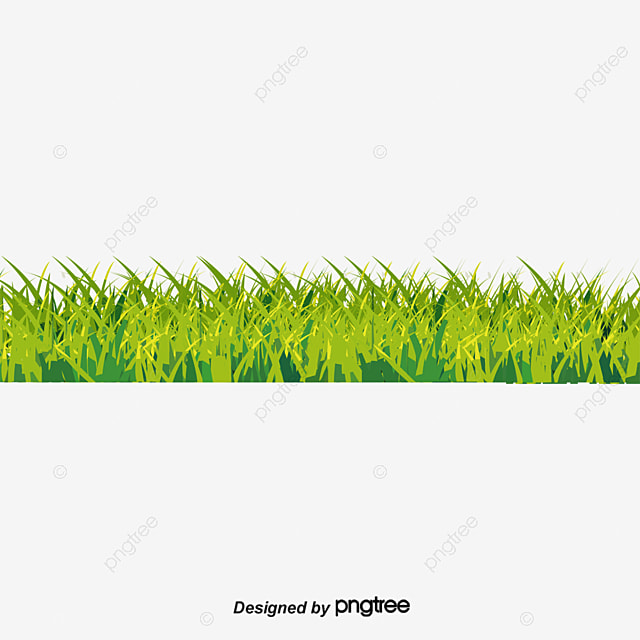 Grass Elevation View Pictures To Pin On Pinterest PinsDaddy