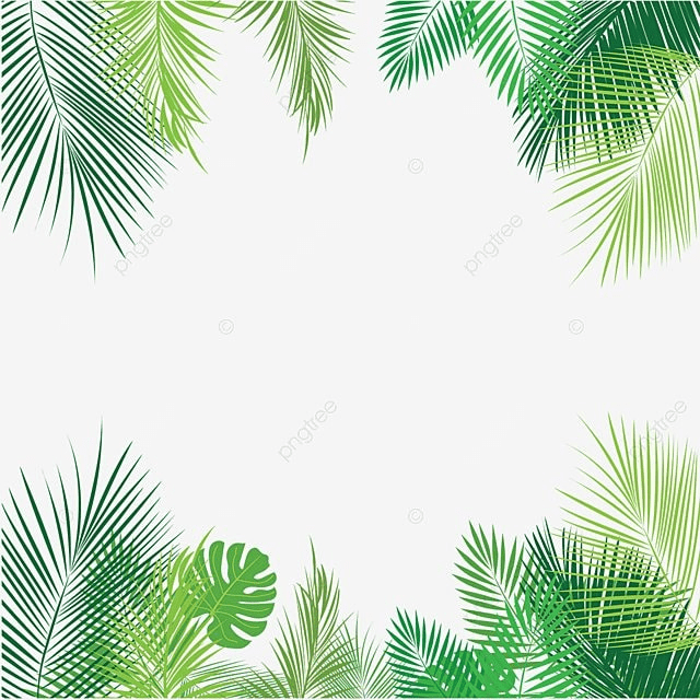 Business card vector png beautiful auto sales business cards resolution:3064x6131, file size: Palm Leaves Png, Vector, PSD, and Clipart With Transparent ...