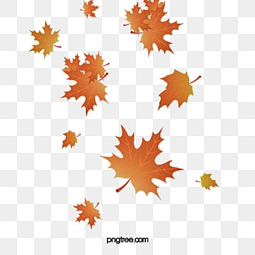 fall leaves png # 6