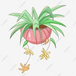 Green Plant Spider Plant Cartoon Green Plant Green Plant Illustration Pink Flower Pot Hand Drawn Plants Small Yellow Flower Illustration Green Plant Spider Plant Png Transparent Clipart Image And Psd File For