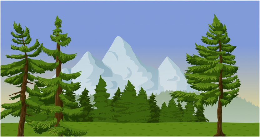 drawings by vertyr 1 / 67 banners of misty coniferous forest. Drawing Clip Art Temperate Coniferous Forest Png